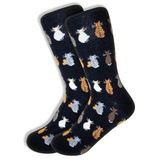 Matching Socks for Women